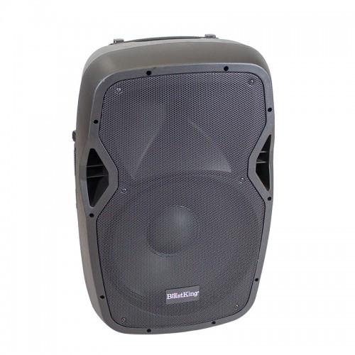 "12"" Passive 800 Watts Loudspeaker - BDS12"
