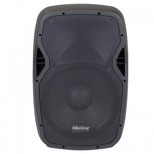 "15"" Passive 1000 Watts Loudspeaker - BDS15"