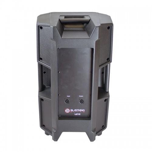 12-inch Two Way Passive Speaker - LZ12
