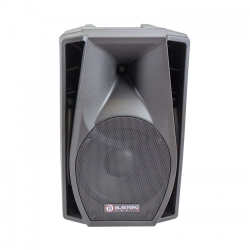 12-inch Two Way Passive Speaker - LZ12