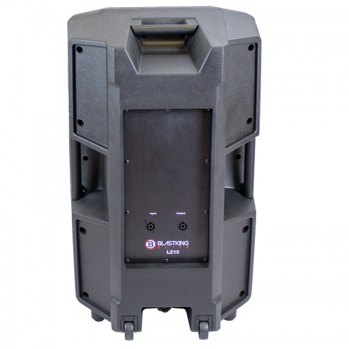 15-inch Two Way Passive Speaker - LZ15