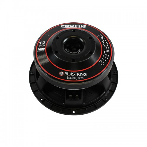 """12"""" 1600 Watts High Output Woofer - PROFILE12"""